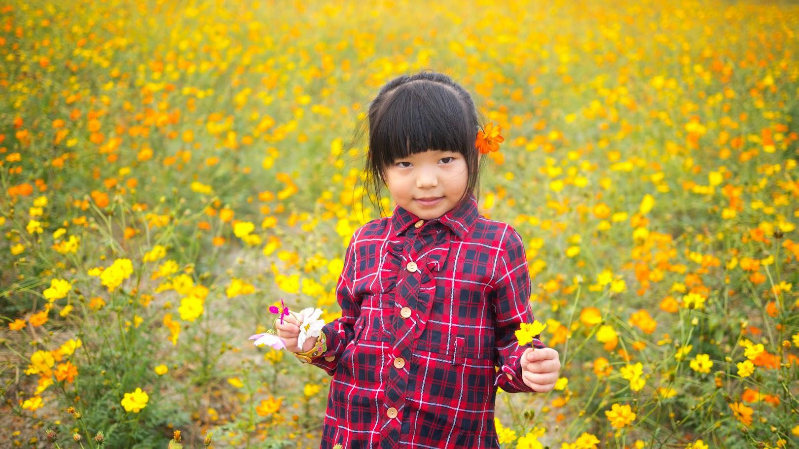 台南市賞花開放地圖正式上線囉 邀您一同探訪生活中的在地美景