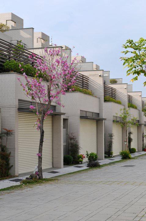 台南市安平區府都建設東西巷社區