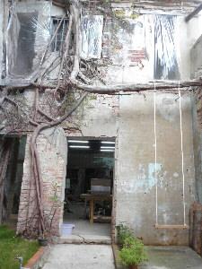 在正興街巷弄內的百年老屋內,藏有一棵老榕樹,隨著陽光灑落,在樹幹旁的鞦韆擺盪,讓人忘卻時光。(記者林雪娟攝)
