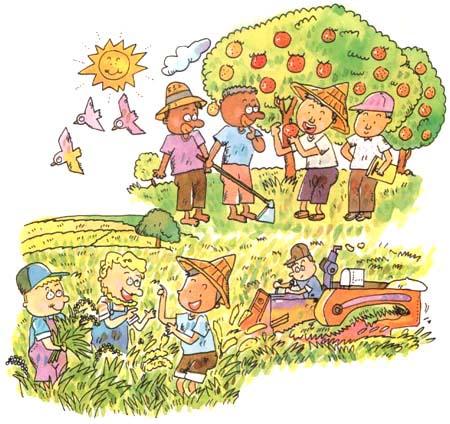 農業發展條例