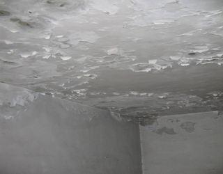 專家提四大方案 完整解決漏水屋糾紛