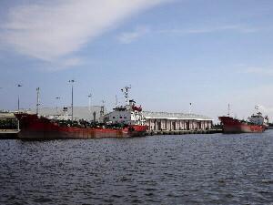 安平自貿港區正式營運