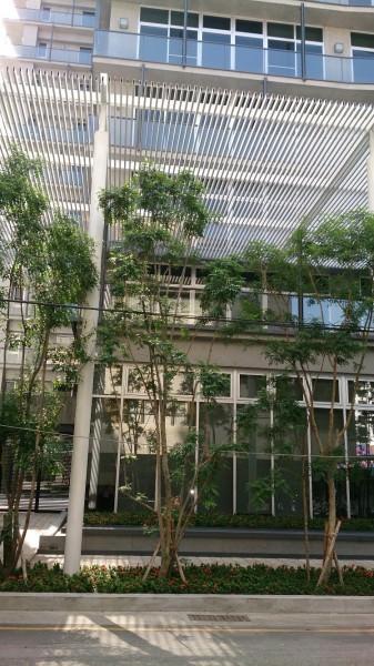 「府都EM」臨路退縮建築,並種植行道樹美化街景。