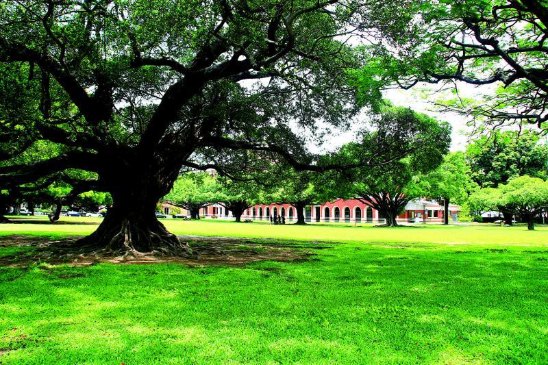 成大校區坐擁開闊綠景,優質賞景活動空間,成為居民休閒養生好去處。