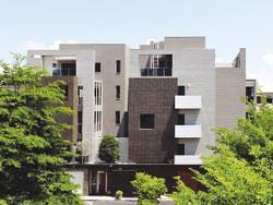 鄭子寮重劃區內,處處可見造型獨特的透天豪宅。圖文/陳惠珍